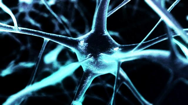neurofeedback